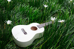 Guitar On Grass Stock Photo