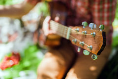 Guitar on picnic in park stock images