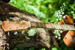 Guitar on picnic in park royalty free stock photos