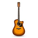 Guitar Realistic Isolated Royalty Free Stock Image