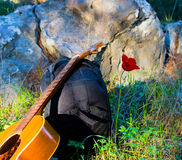 Guitar  and red poppy Royalty Free Stock Photos
