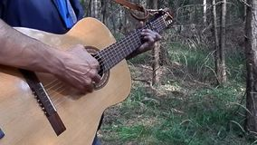 With a guitar for relaxation in the forest. stock video