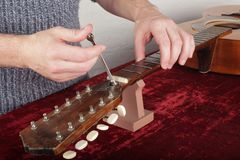 Guitar repair and service - Worker make out adjustment of an truss rod neck. Musical instrument guitar repair and service - Worker make out adjustment of an stock photos