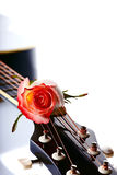 Guitar and rose. Royalty Free Stock Photography