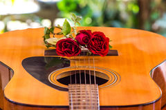 Guitar and rose Stock Photos