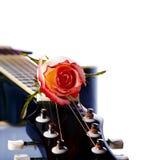 Guitar and rose. Royalty Free Stock Photos