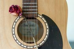 Guitar and Rose Stock Photos