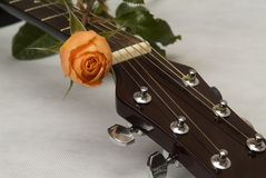 Guitar and Roses Royalty Free Stock Images