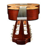 Guitar from side of head and fretboard Stock Image