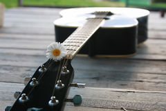 Guitar string and daisy stock photography