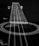 Guitar Strings Black and White. Black and White picture of Strings of an acoustic guitar with a shallow depht of field Royalty Free Stock Photo