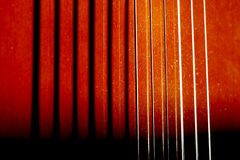 Guitar strings macro Stock Photography