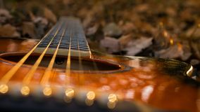 Guitar on autumn leafs and bokeh royalty free stock photo