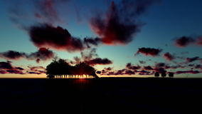 Guitar Trees over Ocean, Timelapse Sunrise with birds flying. Hd video stock footage