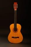 Guitare Photos stock