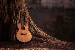 Guitare acoustique en bois Images stock