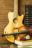 Guitare acoustique et violon Photographie stock libre de droits