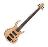 Guitare basse électrique Images libres de droits