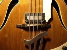 Guitare basse Photographie stock libre de droits