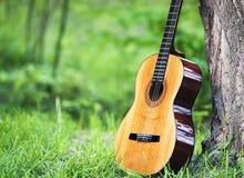 Guitare classique en parc Image stock