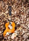 Guitare espagnole photographie stock libre de droits