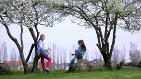 Guitare juvénile amusante de jeu de la fille deux chanter des chansons dehors arbre de floraison de printemps dans la campagne co banque de vidéos