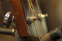 Guitare kablar arkivfoto