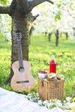 Guitare, panier, sandwichs, plaid et jus dans un Gard de floraison Images stock