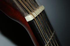 Guitarhead Royalty Free Stock Photo