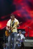 Guitarist-2 foto de stock