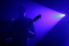 Guitarist. Live concert - a guitar player