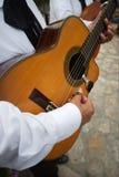 Guitarra Imagens de Stock Royalty Free