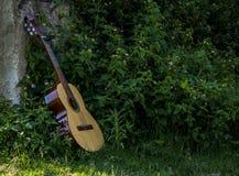 Guitarra acústica con las hojas Imagen de archivo libre de regalías