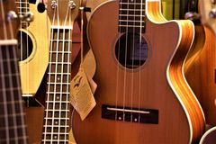 Guitarra clásica del primer hermoso imagen de archivo