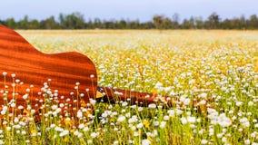 A guitarra com fundo do prado Imagens de Stock