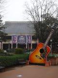 Guitarra de Opry Imagem de Stock