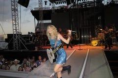 Guitarra de Taylor e mic rápidos Imagens de Stock Royalty Free