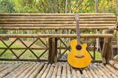 Guitarra e filial Imagem de Stock Royalty Free