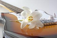Guitarra e flor Imagens de Stock Royalty Free