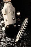Guitarra e harmónico Imagens de Stock