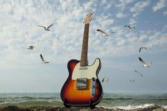 Guitarra e mar Fotos de Stock