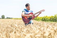 Guitarra na natureza Imagem de Stock