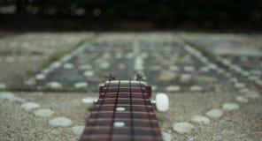 Guitarra no jardim Imagens de Stock