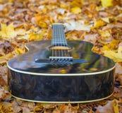 Guitarra que pone entre las hojas Fotos de archivo