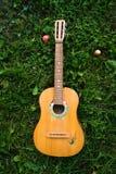 Guitarra vieja Imágenes de archivo libres de regalías