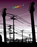 Guitars and wires with birds Stock Images