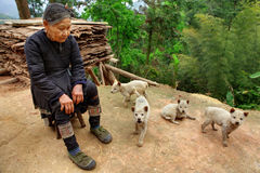 GUIZHOU-PROVINZ; CHINA - ältere chinesische Dame im grünen Betrieb Lizenzfreies Stockfoto