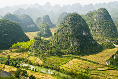 Guizhou Xingyi Wanfenglin Stock Photography