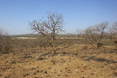 Gujarat landscape Stock Photos