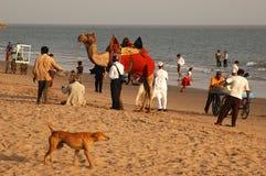gujarat plażowy morze obraz royalty free